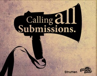 submissionimg