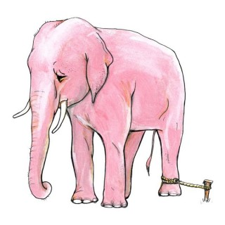 Pink_Elephant_Tied_Up_by_burntfeather